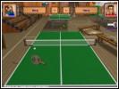 Скриншот Пинг-Понг